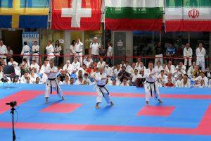 World Karate Day 2017 in München - Kata Synchron Damen