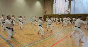 Karateverein in München Action1 Weihnachtslehrgang