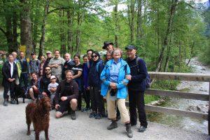 Karategruppe mit Hunden am Flussbett auf Brücke