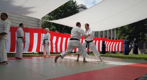 Japanfest 2019 München Karate 13a